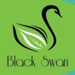 logo_BlackSwan-108x35cm-page-001